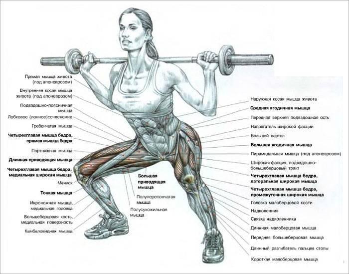 Упражнение для тренировки мышц живота