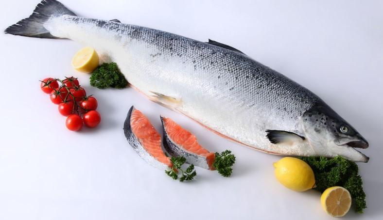 лосось калорийность