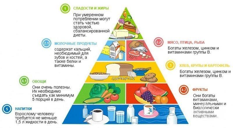 Расположение продуктов в пирамиде